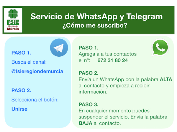 Servicio de WhatsApp y Telegram.001